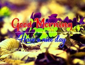 New Top Good Morning Images Wallpaper 2 1