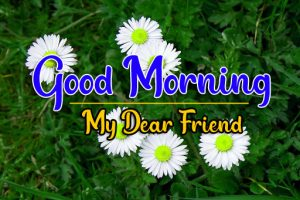 99 + New Day Good Morning Images Download