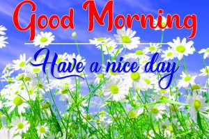 New Top Quality All Good Morning Wallpaper Download