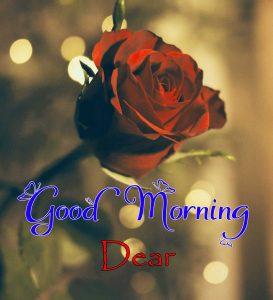 Nice Good Morning Images Free