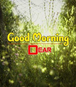 Nice Good Morning Images Photo
