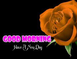 Nice Good Morning Images Pics