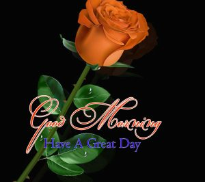 Nice Good Morning Images Pictures 1