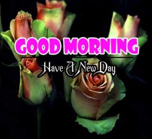 Nice Good Morning Pics Free