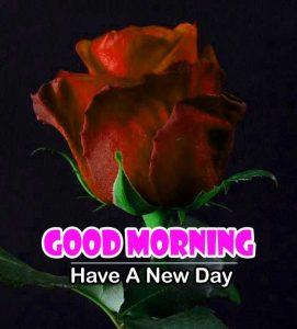 Nice Good Morning Wallapper