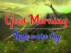 Quality Flower Good Morning Wallpaper
