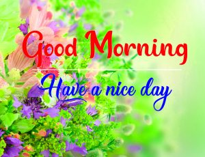 Top All Good Morning Wallpaper Download