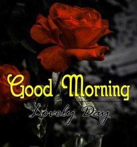Top Good Morning Download