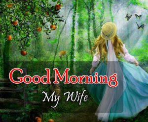 Top Good Morning Images Wallapper