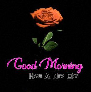 Top Good Morning Images Wallpaper 1
