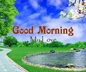 Top Good Morning Imges Pics