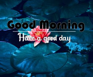 Top HD All Good Morning Images