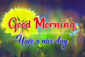 Top Quality Flower Good Morning Wallpaper 3