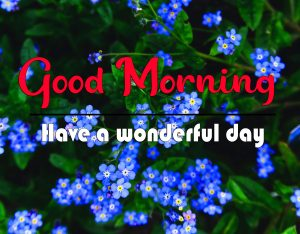Top Quality Full HD Good Morning Images Wallpaper