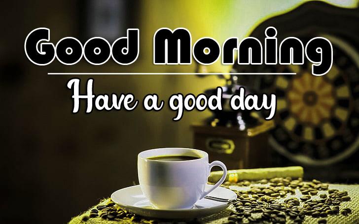 184+ Flower Good morning HD Images Wallpaper For Whatsapp/ Facebook
