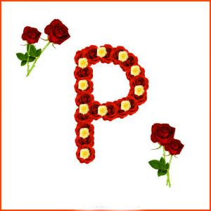 p letter dp for whatsapp Pictures 2