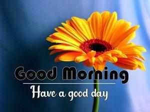 yellow Flower Good Morning Images Wallpaper