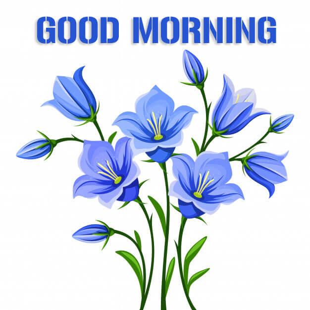 Beautiful Good Morning Wishes Pics