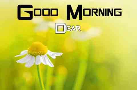 Free Good Morning Images 2