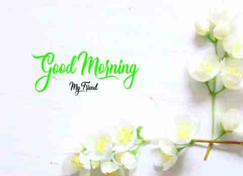 Free Good Morning Images 8
