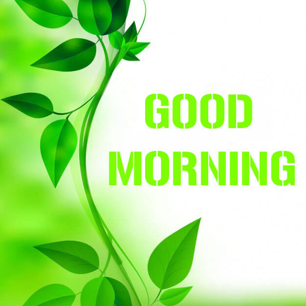 Free Good Morning Wishes Wallpaper 2