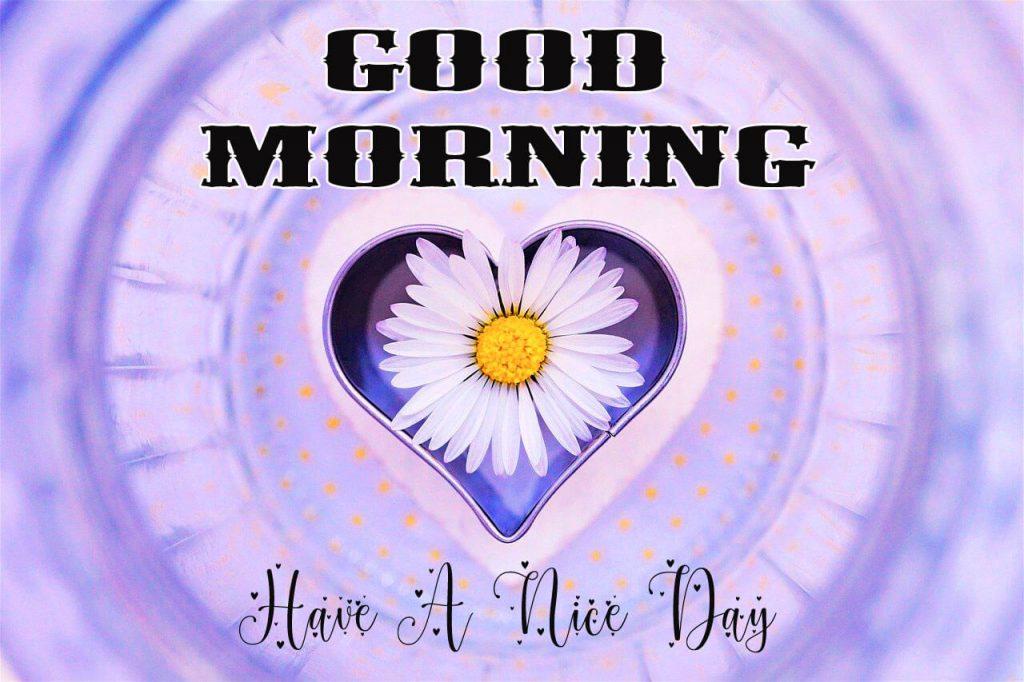 Good Morning Pics Dowload