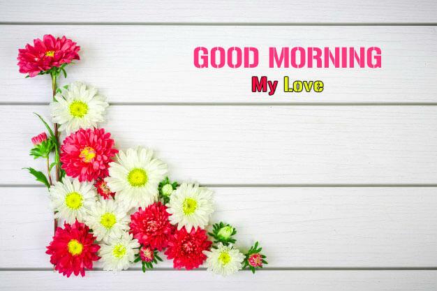 Good Morning Wishes Photo Free