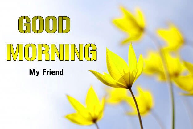 Good Morning Wishes Pictures 2
