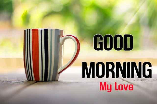 beautiful cup Good Morning hd download