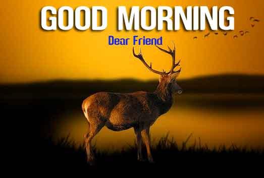 best sad Good Morning wallpaper