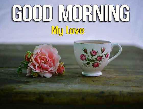 coffee flower Good Morning hd download