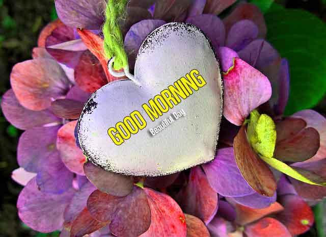 heart Good Morning wallpaper