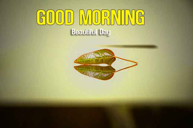 latest sad Good Morning pics hd