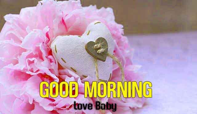 pink flower Good Morning hd download