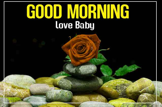 For Har Din { New } Good Morning 4k Full HD Images Download With Flower