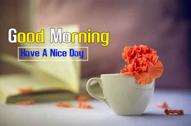 Good Morning Friends Images Download