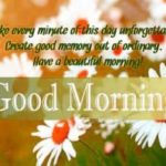 413+ Good Morning SMS Message Images Latest Update !!!!