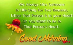 gd mrng images  photo Wallpaper Pictures for whatsaap download