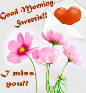 Love gd mrng images Wallpaper for Whatsaap Download With Flower