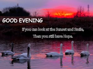 Good Evening Images Pics Download