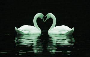 Love Pics Images Photo Download