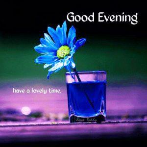 Flower Good Evening Pics Photo Wallpaper