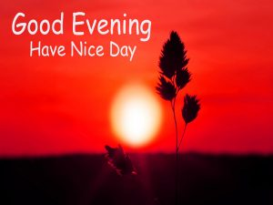 Good Evening Photo For Whatsaap Download