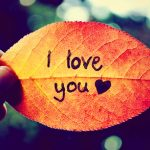 187+ I Love You Images Pictures For Whatsapp