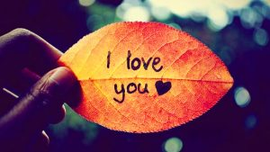 i love you images wallpaper for whatsaap