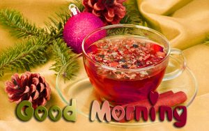Nature Good Morning 3D Photos HD Download