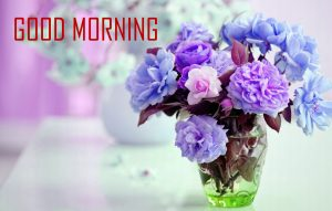 Flower Good Morning Images Download for Whatsapp & Facebook