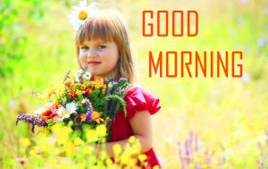 Flower Good Morning Photo Pics Free Download