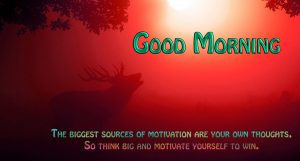 Good Morning 3D Photos Wallpaper pictures For Whatsaap