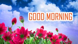 Flower Good Morning Images Download